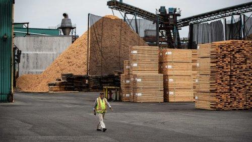 Baustoff-Engpässe: Holz-Preise in den USA brechen ein