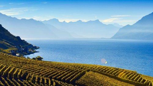 Auf in die Zukunft: Ein Spaziergang am Genfer See, 2031