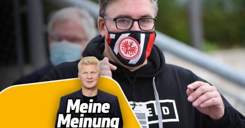 Stefan Effenberg über FC Bayern, BVB & Karim Adeyemi - SPORT1-Kolumne