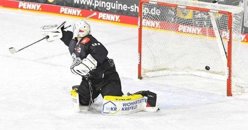 Eishockey, DEL: Krefeld Pinguine stürzen schon wieder ins Chaos