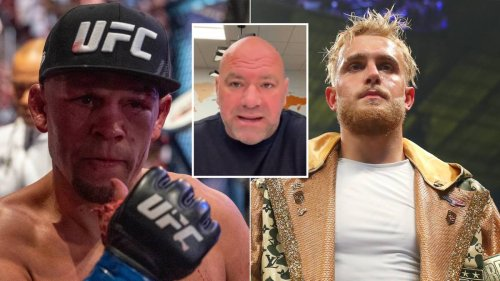 Dana White Reacts To Nate Diaz Possibly Leaving UFC, Aims Subtle Dig Ahead Of Potential Jake Paul Bout