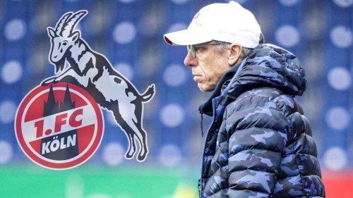 """""""Nicht der richtige Zeitpunkt"""": Köln-Comeback von Trainer Stöger geplatzt"""
