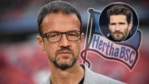 Neuer Hertha-Boss Fredi Bobic bestätigt: Arne Friedrich bleibt Sportdirektor