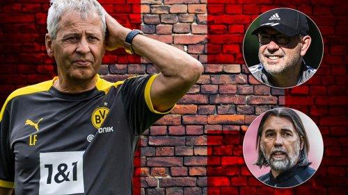 Neuer Schweiz-Trainer? Favre sagt ab – Bericht: Fischer und Schmidt Kandidaten