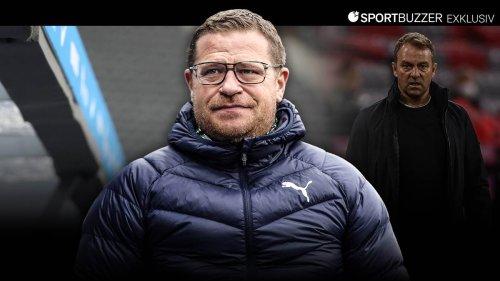 Nach Vogel-Affäre mit Flick: Gladbach-Manager Eberl entschuldigt sich
