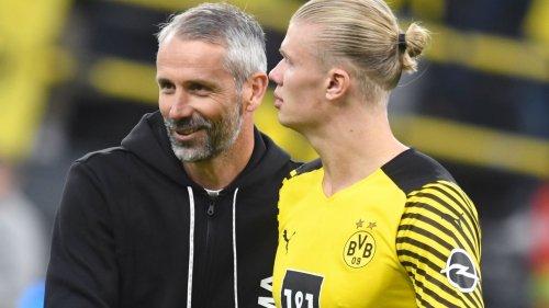 """BVB bangt um Haaland - Rose: """"Signal an die Gruppe senden"""""""