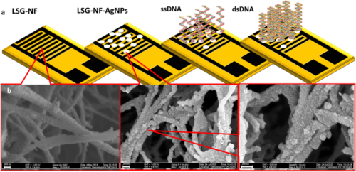 Laser-scribed graphene nanofiber decorated with oil palm lignin capped silver nanoparticles: a green biosensor