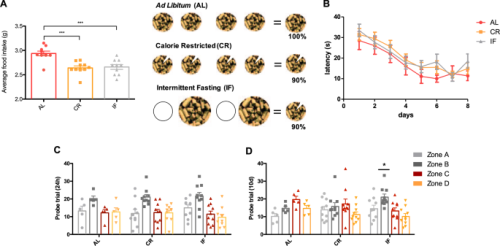 Intermittent fasting enhances long-term memory consolidation, adult hippocampal neurogenesis, and expression of longevity gene Klotho