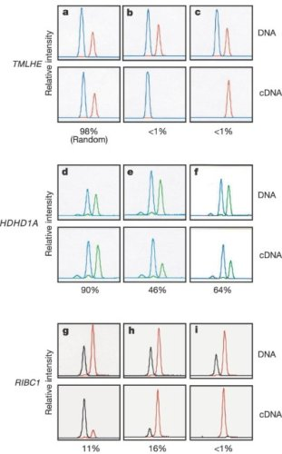 X-inactivation profile reveals extensive variability in X-linked gene expression in females - Nature