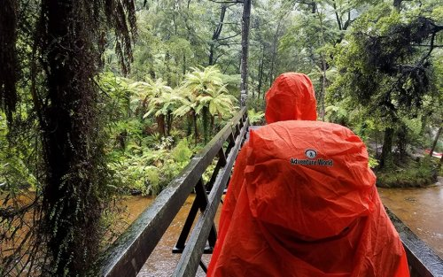 The Best Backpack Rain Covers Will Give You Peace of Mind Against the Rain