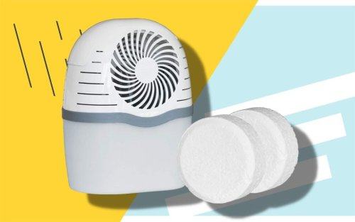 The Best Moisture Absorbers To Prevent Mold, Mildew and Allergens From Taking Over Your Home
