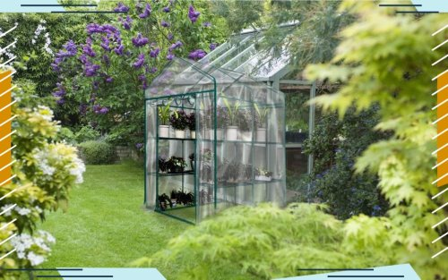 Keep Your Greenery Alive Year Round With These Toasty Greenhouses