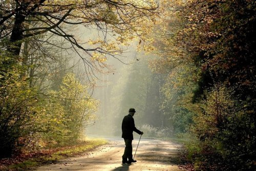 Scientists may be able to predict types of dementia more accurately based on walking patterns