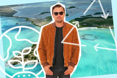 Is Leonardo DiCaprio trying to buy his way onto the new eco A-list?