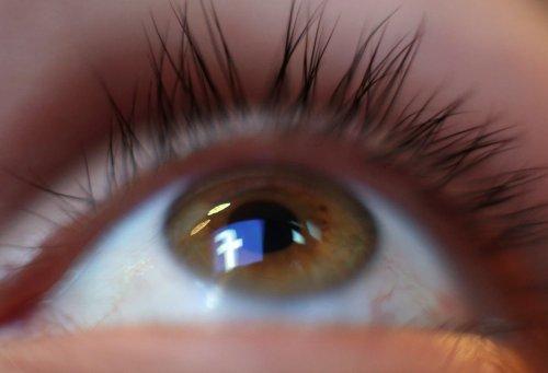 MPs prepare for whistleblower's revelations on inner workings of Facebook