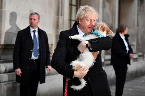 Boris Johnson complains about Dilyn the dog's 'romantic urges'