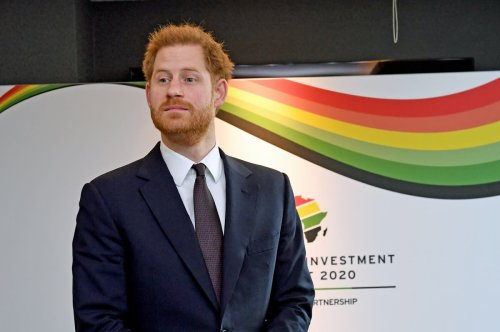Prince Harry makes plea to save 'beating heart' of southern Africa
