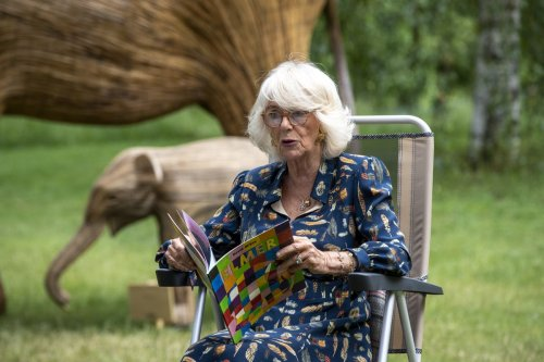 Duchess of Cornwall fights off hay fever at launch of Elephant Story Trail