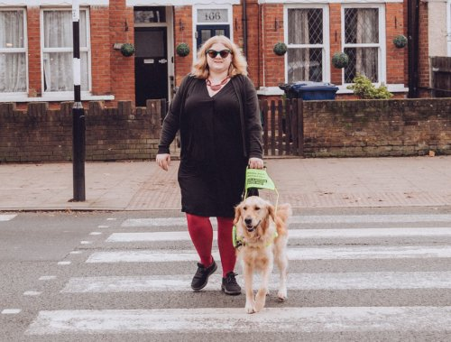 Woman 'screamed at' by man after asking him to stop petting her guide dog