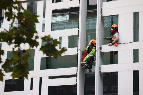 Four charged after Animal Rebellion protesters scale London building