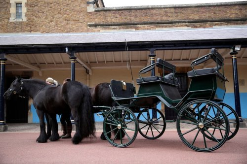 Philip's carriage and ponies to make poignant appearance at funeral