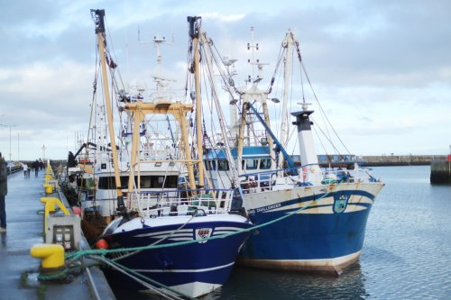 No 10 vows retaliation if Paris goes ahead with threat in Brexit fishing feud