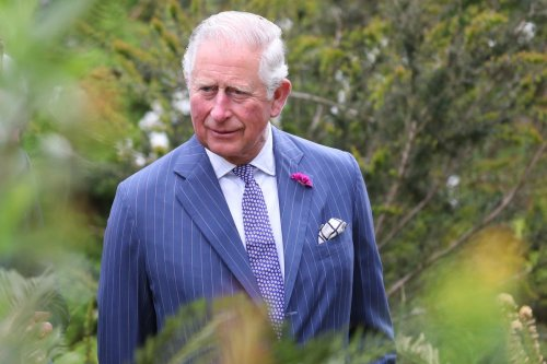 Charles launches new climate change channel for Amazon Prime
