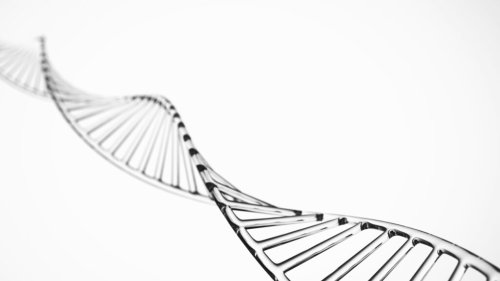 The effects of a landmark ruling on DNA ownership are becoming clearer