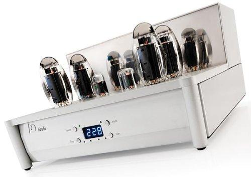 Doshi Audio Evolution Monoblock power amplifier