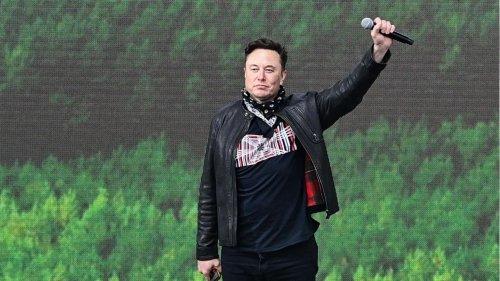 Vermögen von über 200 Milliarden Euro: Elon Musk ist reichster Mensch der Welt