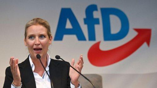 """""""Ich freue mich richtig"""", sagt Alice Weidel – doch in der AfD herrscht Ernüchterung"""