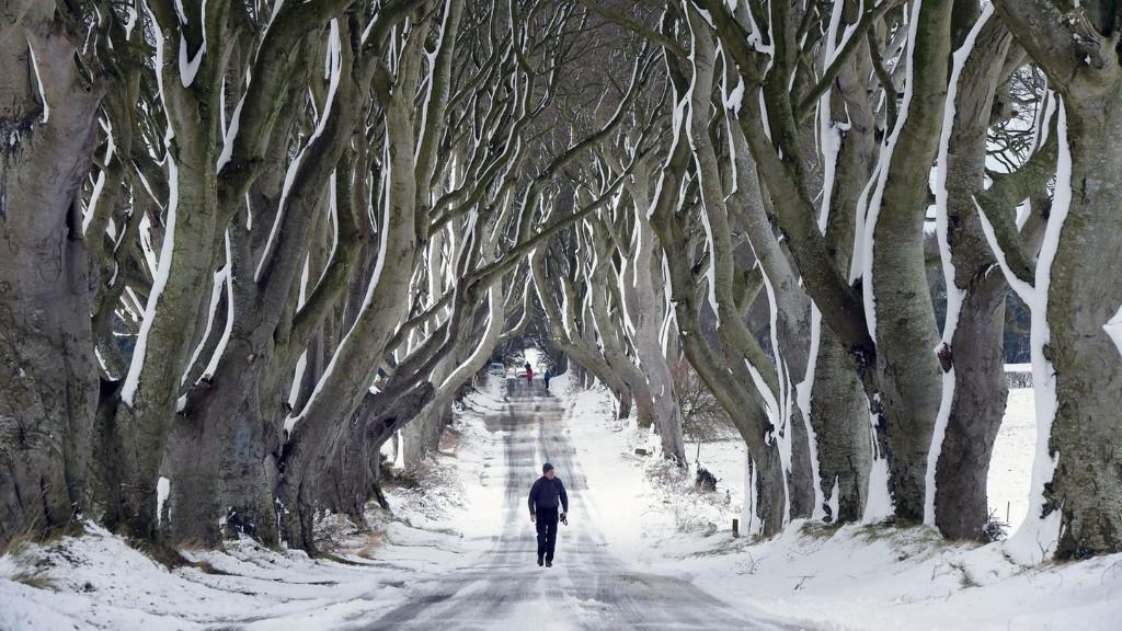 Warum uns wahrscheinlich ein langer, kalter Winter bevorsteht