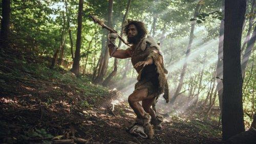 Steinzeitmenschen lebten wohl fast komplett von Fleisch – bis die großen Tiere ausstarben