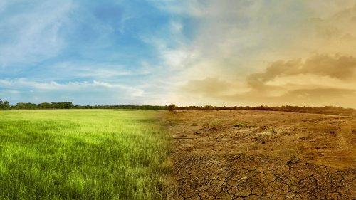 Wieso wird es immer wärmer auf der Erde? Der Klimawandel in nur drei Minuten erklärt