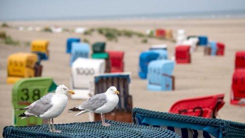 Urlaub an Nord- und Ostsee in Corona-Zeiten: Worauf sich Gäste einstellen müssen