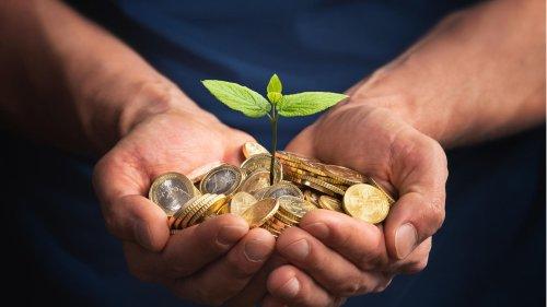 """Wie geht grüne Geldanlage? Die Experten von """"Capital"""" erklären es Ihnen"""