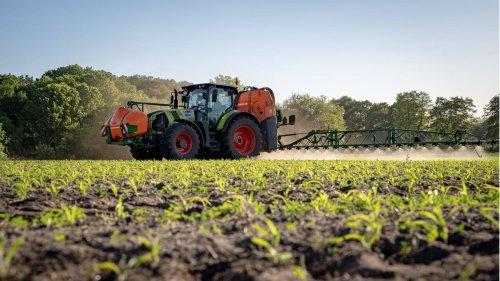 Neue Erkenntnisse zu Glyphosat: Ist das Pflanzenschutzmittel doch für das weltweite Insektensterben verantwortlich?