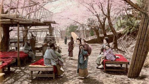 Japan kurz nach der Öffnung: Vintage-Fotografien zeigen das ursprüngliche Land