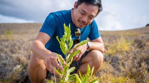 Ex-Reddit-Chef investiert sein Silicon-Valley-Vermögen jetzt in ein Baumpflanz-Projekt