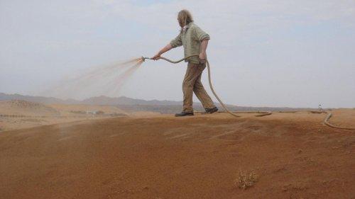 Nanoton: Norwegische Erfindung verwandelt Wüsten in Gärten