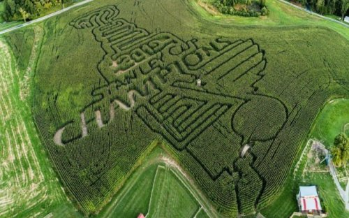 Three Tidbits: A-maze-ing contest at Eckert's, Rec Hall STL expands, can the canned mushrooms