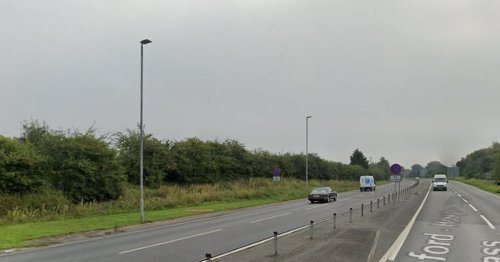 Driver killed in A500 smash