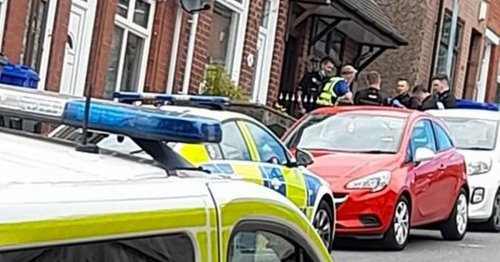 Police seize 80 cannabis plants in Stoke-on-Trent house raid