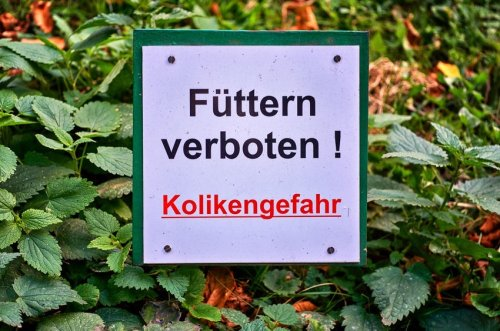 Important German warning words and phrases