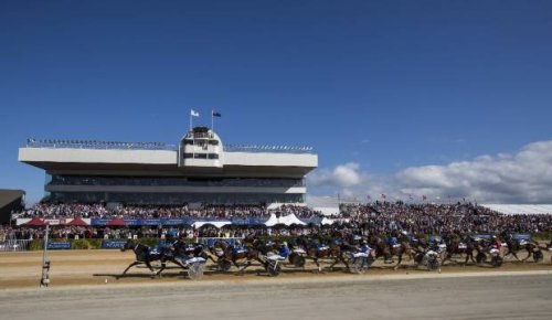 Ticket sales on hold as Addington Cup Week faces first ever spectator-less event