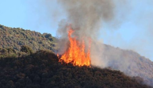 Homes evacuated 'as a precaution' due to large scrub fire in Lower Hutt