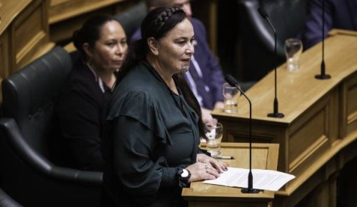 Covid-19 Australia: Māori MPs disappointed haka was used in Sydney anti-lockdown protest