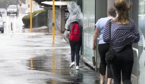 Wellington today, Monday, June 21: Wet weather and winds whip around the region, some ferry sailings cancelled