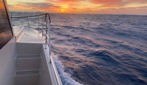 Covid-19: Kiwis risking it on the high seas to get back home