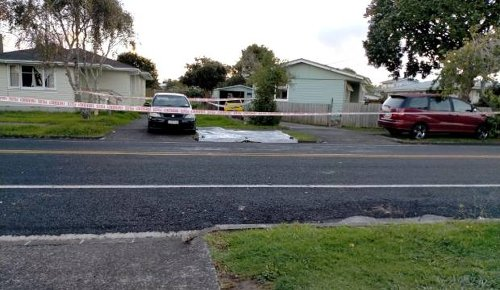 Witness saw two women leaving in police cars after person found seriously injured in south Auckland